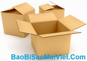 bao-bi-carton
